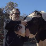 Moby, Joaquin Phoenix e Billie Eilish exortam os líderes mundiais em negociações sobre o clima a conter a pecuária